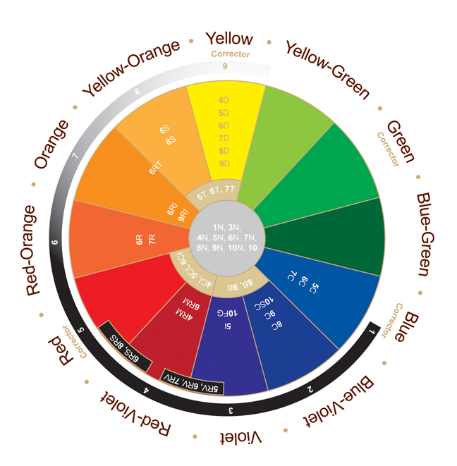 The Hair Color Wheel Hair And Other Musings Of Hair Dye Color ...